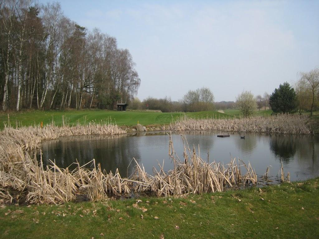Kleiner Teich vor dem Grün Loch 6