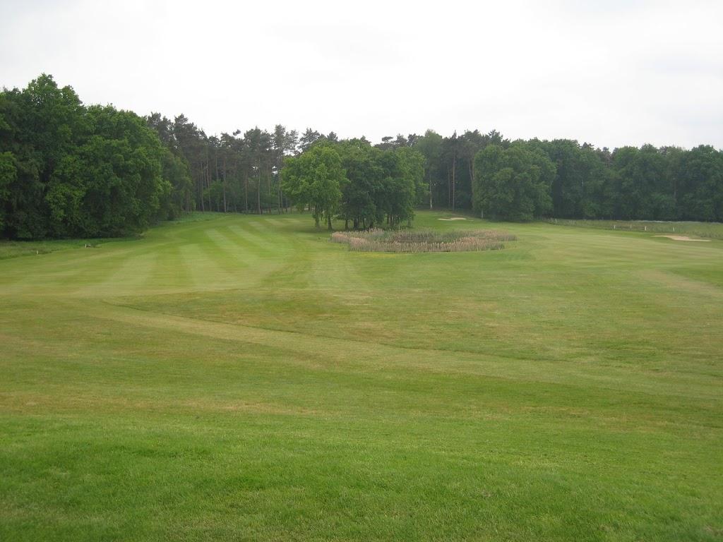 Links oder rechts? Loch 6. Das Grün ist hinter den Bäumen.