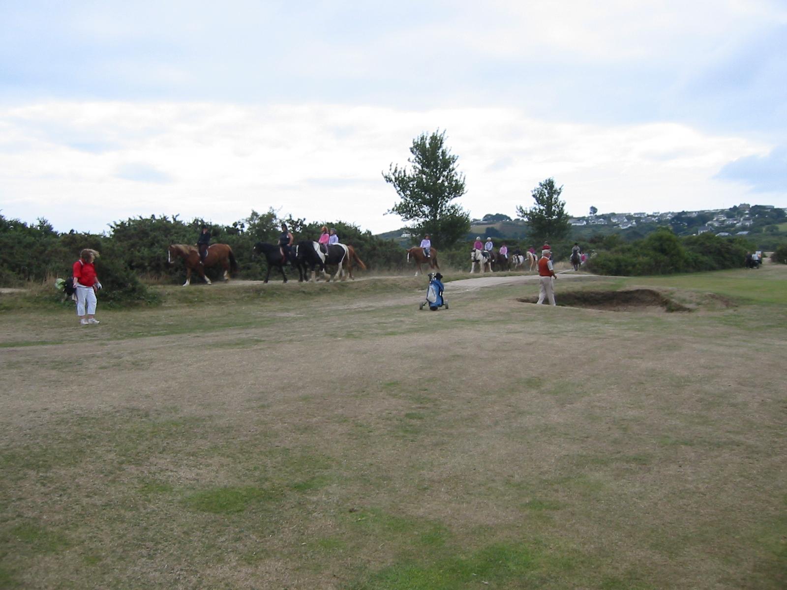 Achtung! Pferde auf dem Platz...
