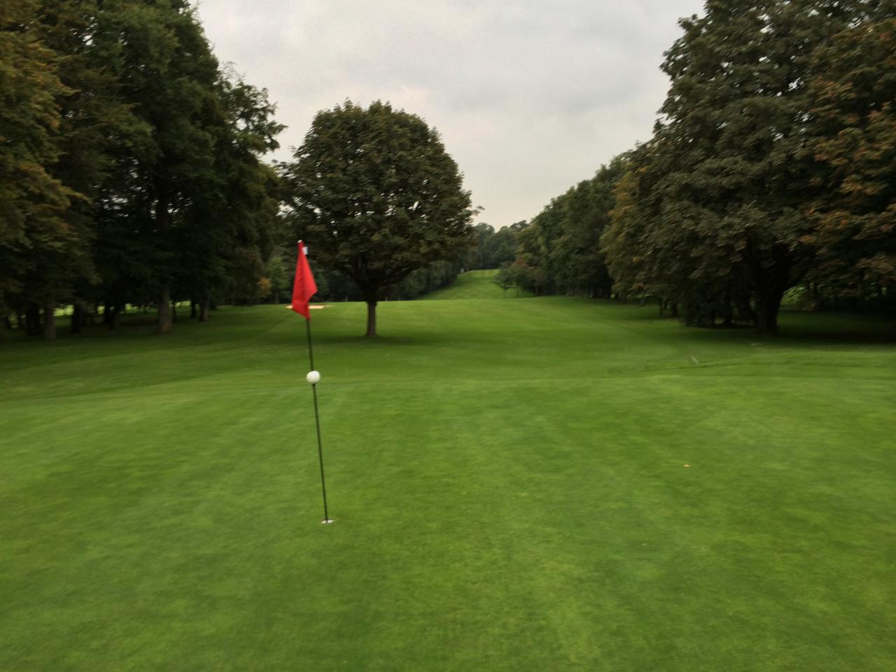 Der störende Baum vor dem Grün der 8 am Marienburger Golf-Club
