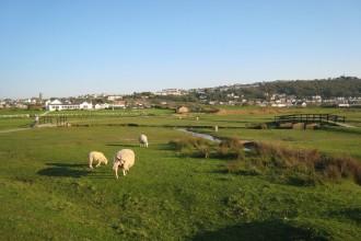 Blick auf Clubhaus und Abschlag Loch 1 von Royal North Devon